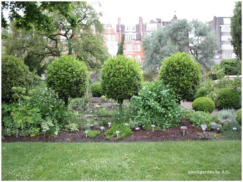 Un giardino botanico a londra aboutgarden for Bordura giardino