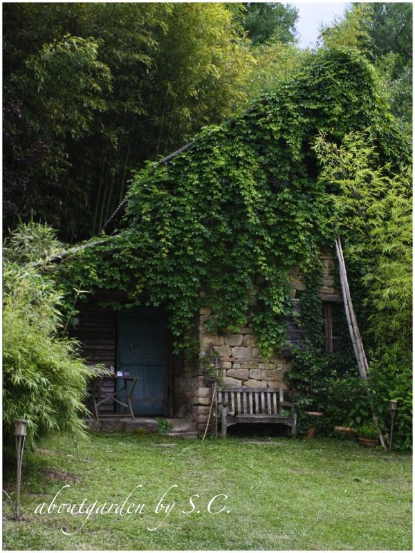 il giardino dei bamb aboutgarden