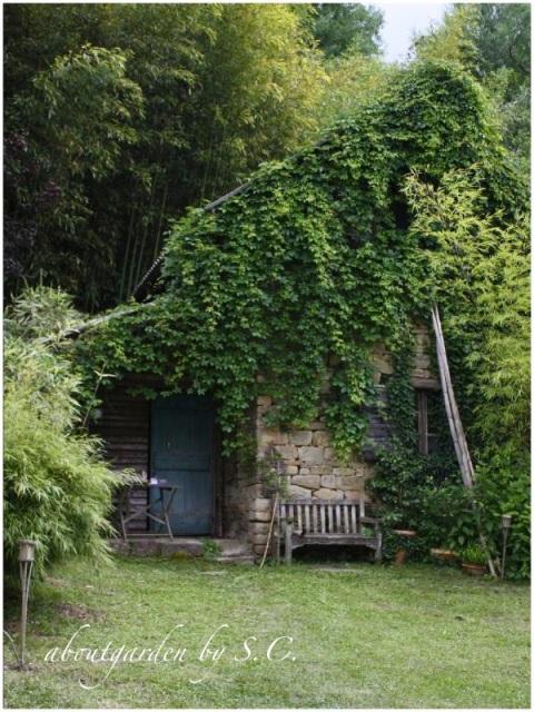 Il giardino dei bamb aboutgarden for Consolidare un terreno