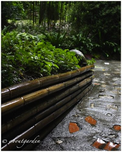 bambuseto-giardino-heller