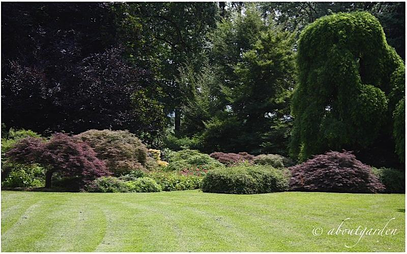 Giardino di villa genova aboutgarden - Ville con giardino foto ...