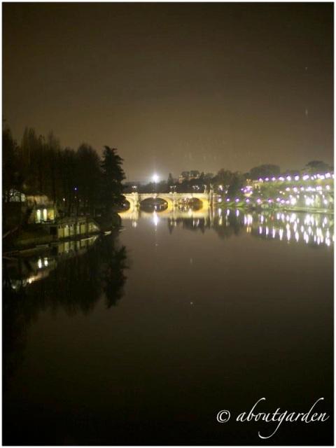 Torino by nigth