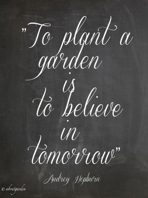 garden quote Audrey Hepburn