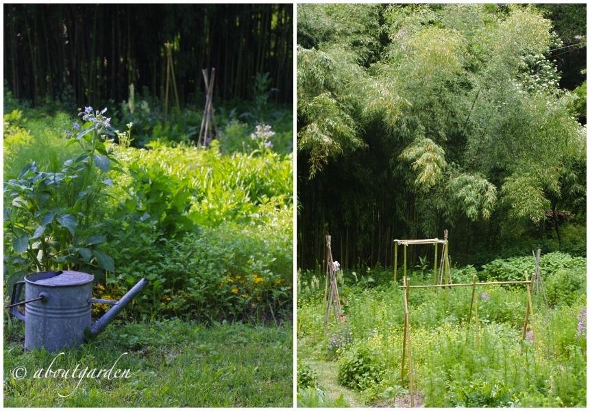 Giardini del casoncello aboutgarden for Orto giardino