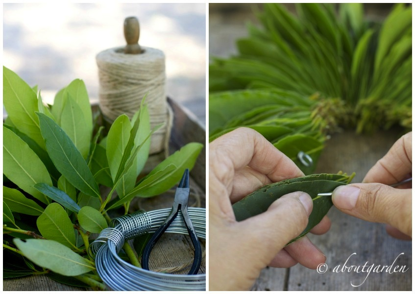 DIY: laurel wreath | aboutgarden