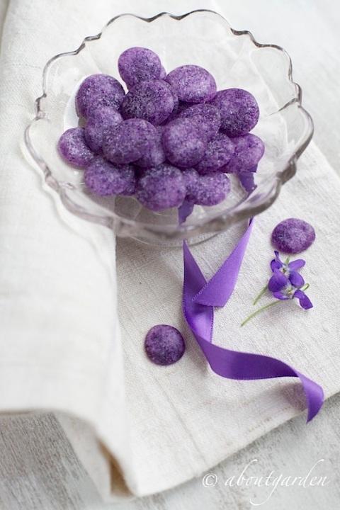 ginevrine alla violetta
