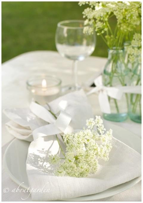 tavola white