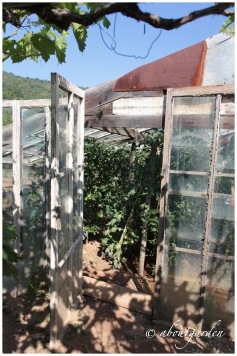 vetrina serra