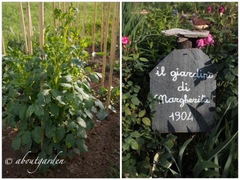 giardino di margherita