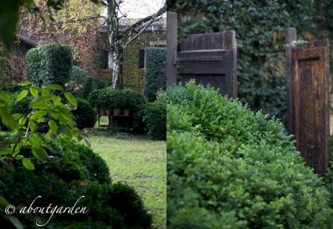giardino Mirella Collavini