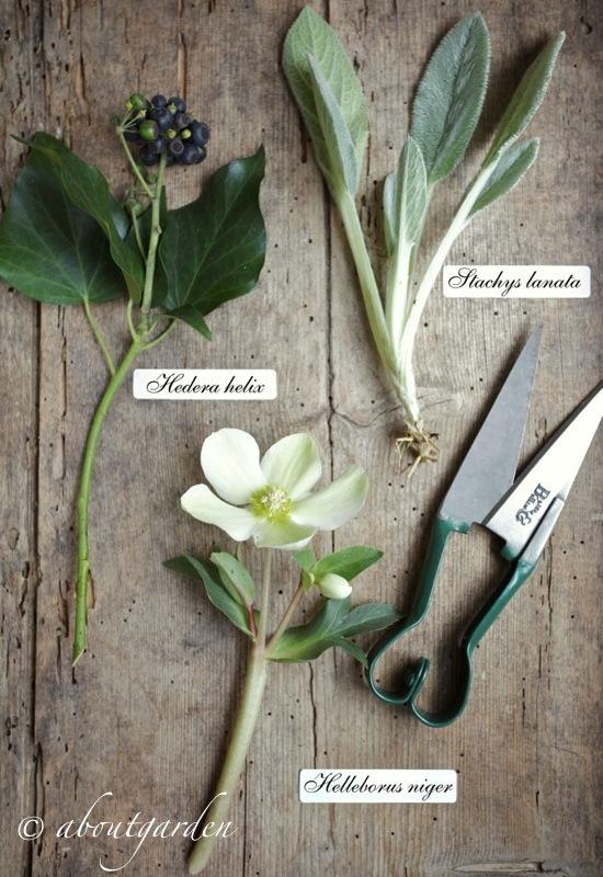 ingredienti bouquet