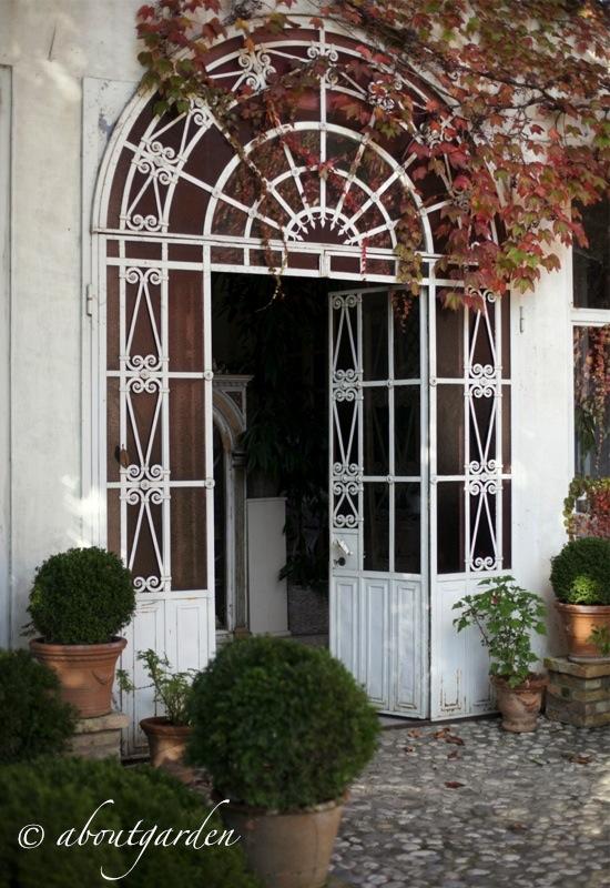 Il giardino della signora delle viole aboutgarden for Il giardini