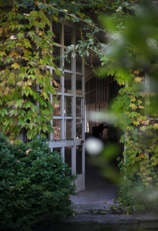 il giardino della Signora delle Viole  aboutgarden