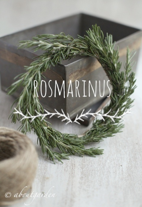 rosmarinus wreath