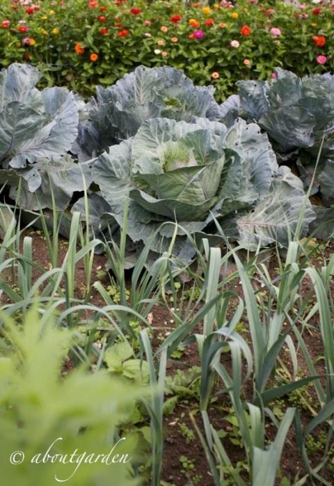 orto giardino a Miromesnil