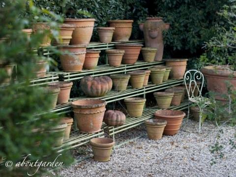 collezione vasi