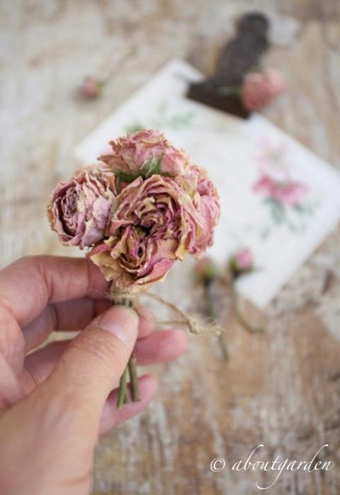 essicare rose