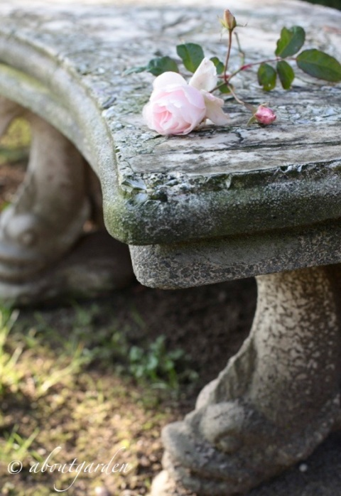 seduta in pietra e conchiglie