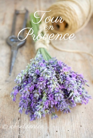 Tour en Provence