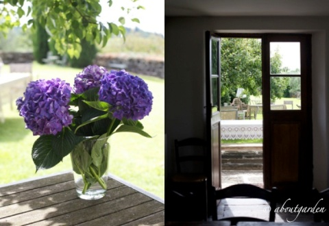 fiori interno esterno