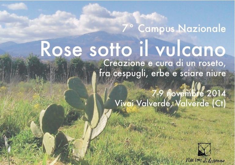 7° campus cartolina