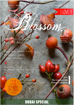 Blossomzine winter issue 2014