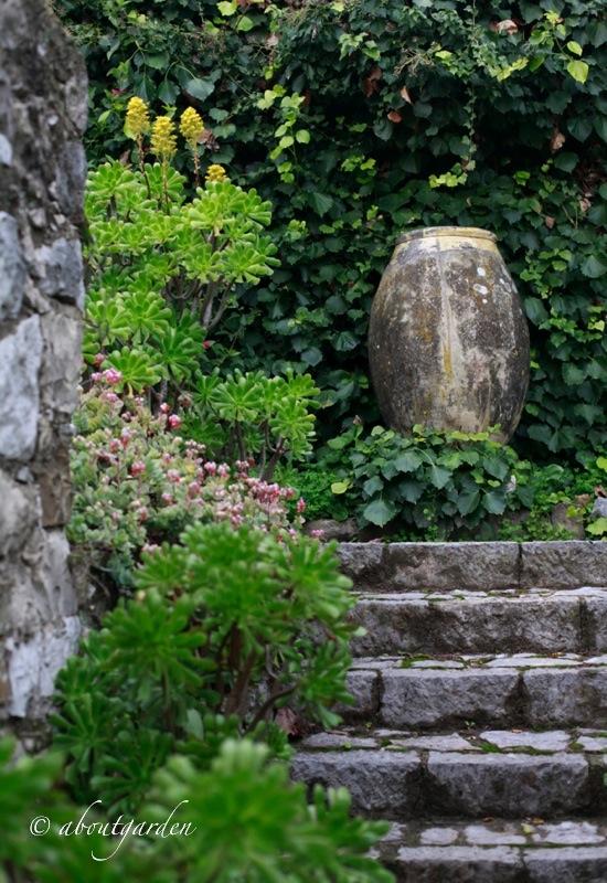 Jardin clos du peyronnet for Jardin clos