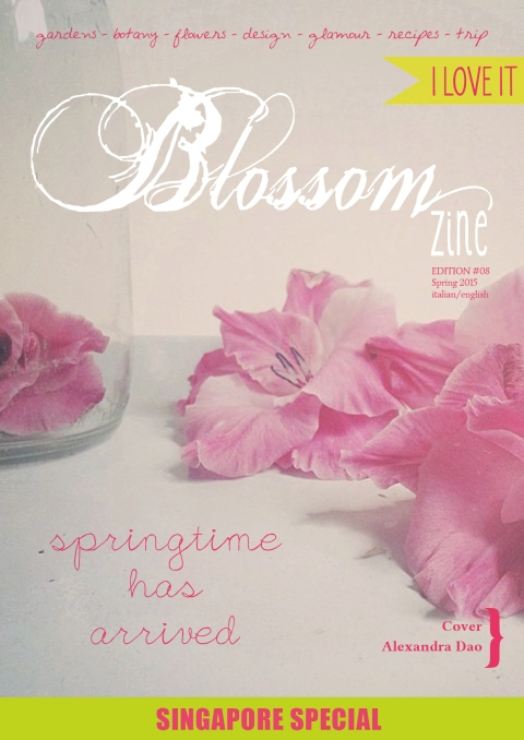 Spring-8-2015-cover-HR--1
