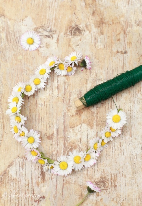 coroncina daisy