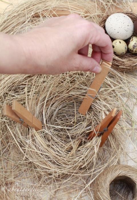 formare nido