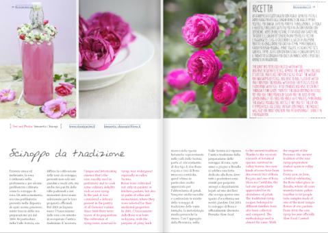 Blossomzine sciroppo di rosa