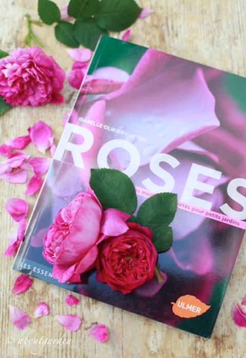 Libro Roses Isabelle