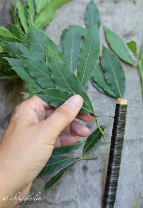 legare rami e foglie