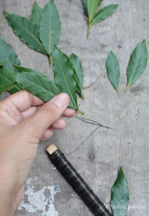 legare tre foglie