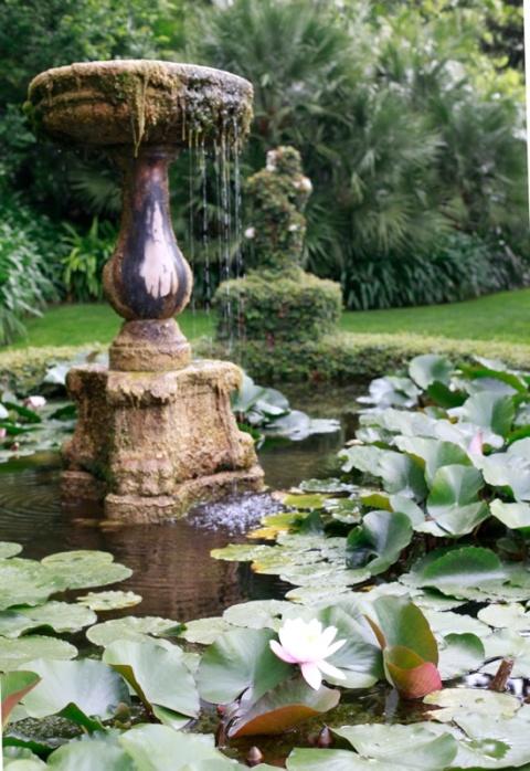 vasca dei fior di loto