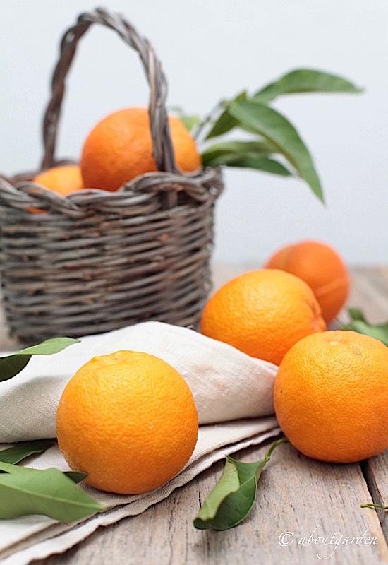 cesto arance