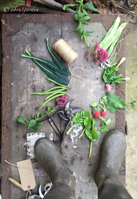 preparazione tavola Veg & Flowers