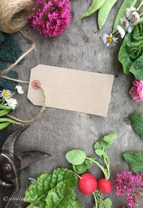 Tavola Veg & Flowers