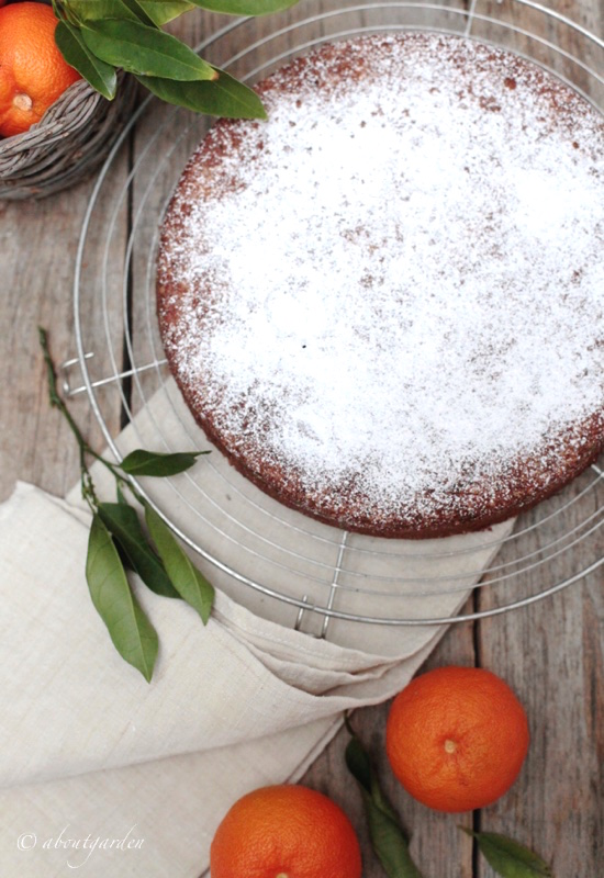 torta arancia amara