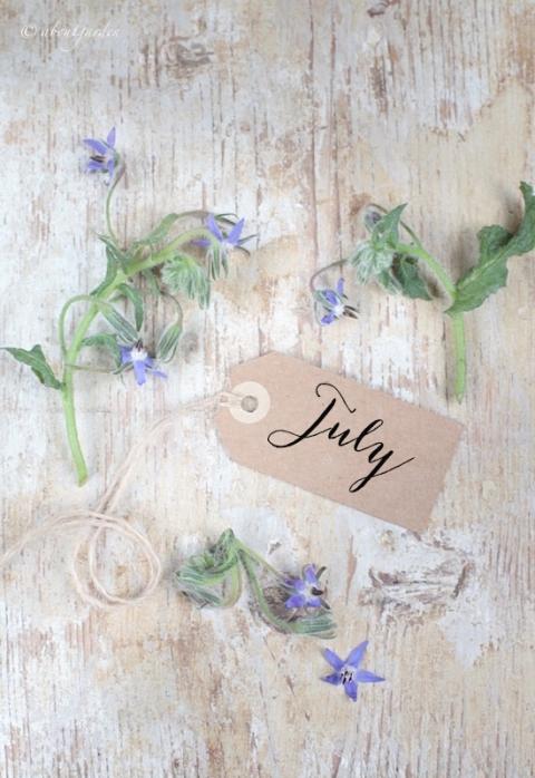borragine luglio copia