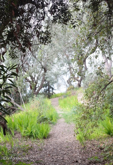giardino Boccanegra