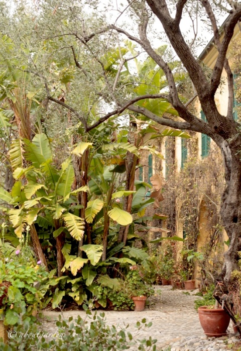 scorcio Villa Boccanegra
