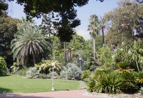 Parco di Villa Ormond