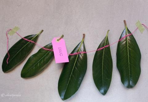 buntng-foglie-per-dmc-2