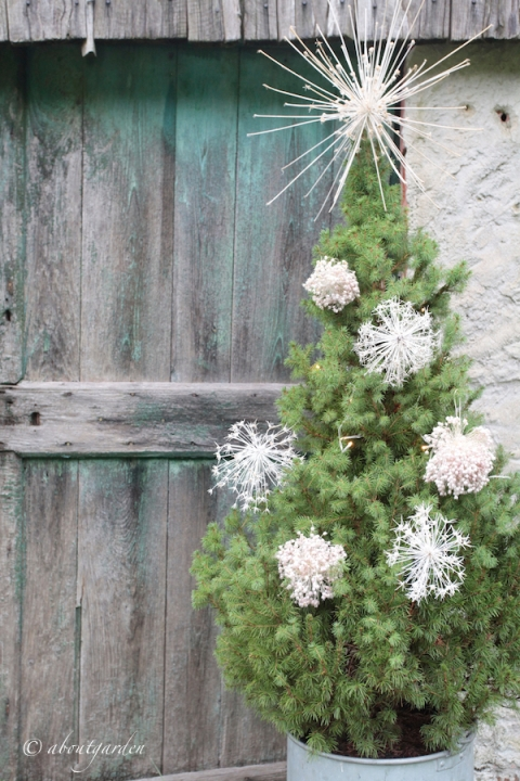 Albero di Natale con allium.jpg