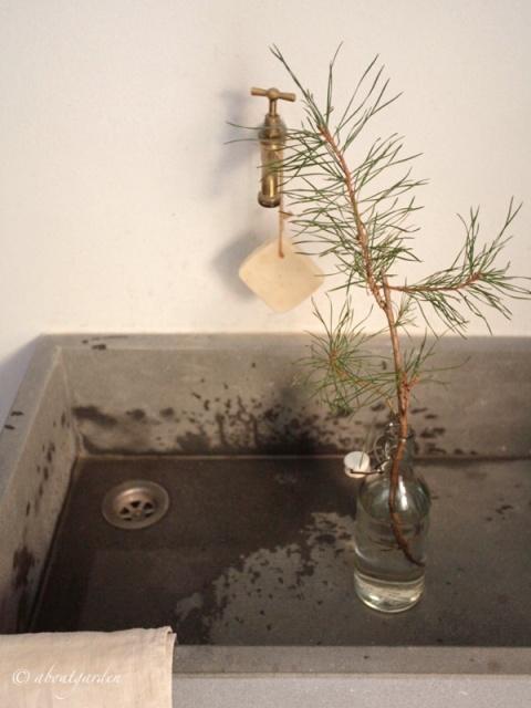 lavello-con-pino