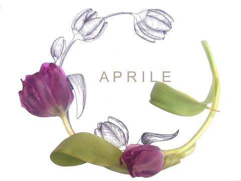 aprile copia