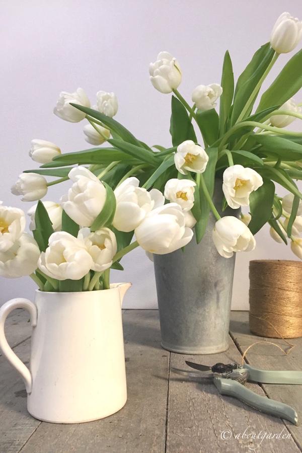 Tulipani composizioni