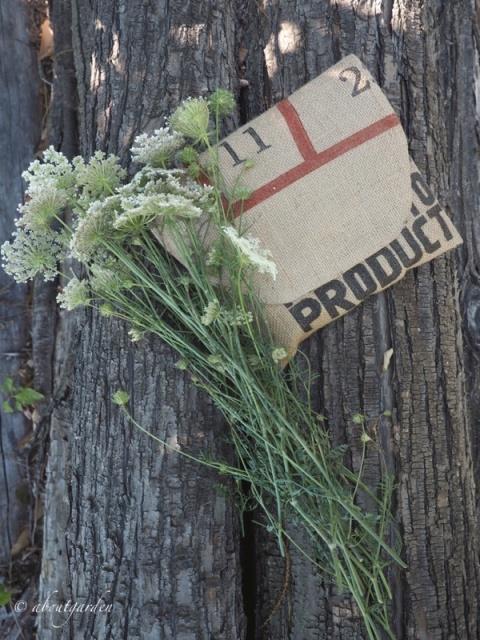mazzolino di fiori di campo