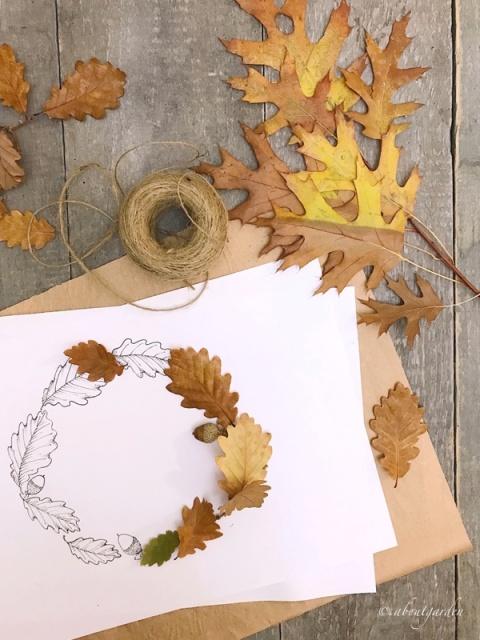 disegno con foglie